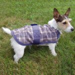 Plaid/Fleece Lined Dog Coat