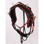 JH 701 Xtreme Edge Race Harness
