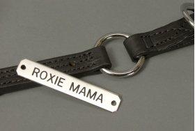 "Engraved Chrome 5/8"" Name Plate"