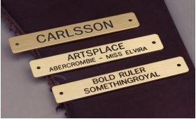 """Engraved Brass 3/4"""" Name Plate"""