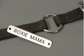 "Engraved Chrome 5/8"" Name Plate"