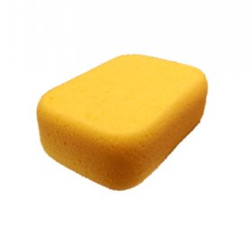 Synthetic Body Sponge