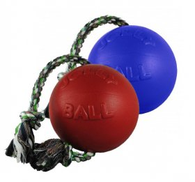 Jolly Romp-n-Roll Ball