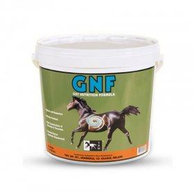 GNF (Gut Nutrition Formula)