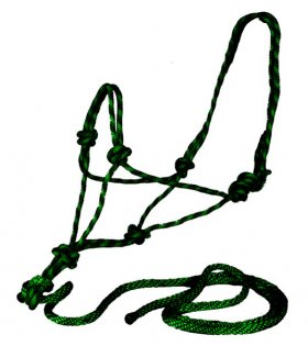 Rope Halter and Lead