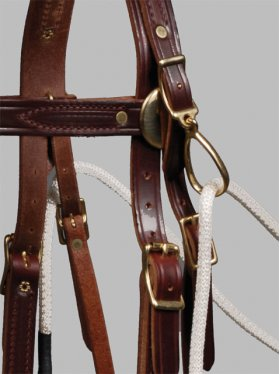 Fennell Sidecheck Bridle closeup