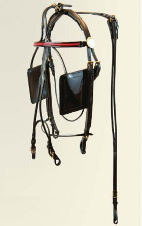 Walsh FH Bridle