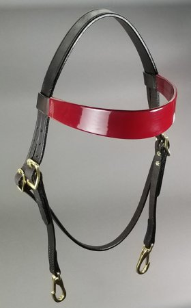 Training Headstall